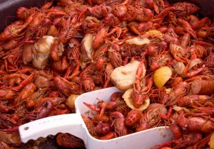 Look at all this delicious crawfish to eat!